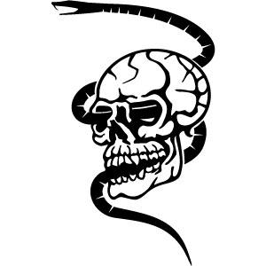 Snake Tattoos in Bangkok