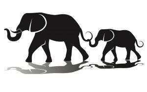 Tatouage d'éléphant Bangkok